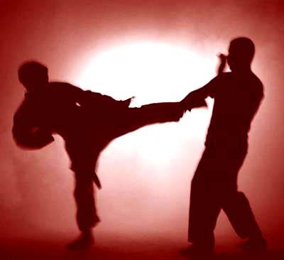 arte-martiale