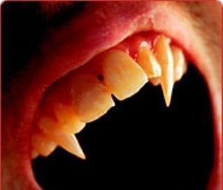 vampir5