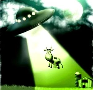 vaca rapita OZN