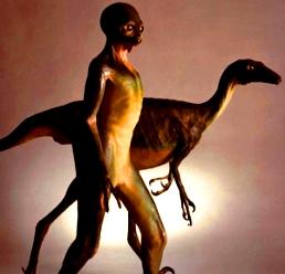 dinozaur om