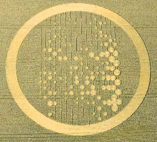 Giulgiu din Torino in cercurile de pe lanuriel de cereale