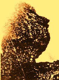 Sfinxul de la Piatra Arsa