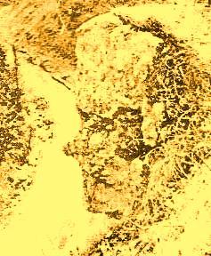 sfinxul de la pietrele lui Solomon