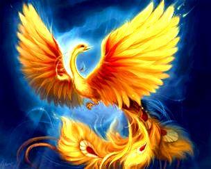 Pasărea Phoenix a existat cu adevărat şi nu e doar un mit? Poate trăi 500 de ani?