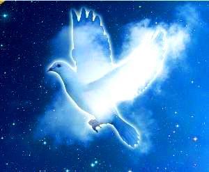 Un porumbel alb a venit din cer şi s-a aşezat pe burta mea, prin telepatie!