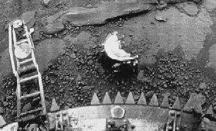 Un om de ştiinţă rus crede că o sondă sovietică din anul 1982 a fotografiat pe Venus fiinţe vii, printre care şi un scorpion!