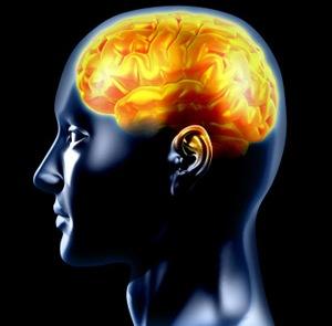 Cea mai mare enigmă a medicinii moderne: cum de oamenii pot trăi şi gândi fără creier?