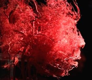 Cercetătorii au inventat particule cu oxigen, care, dacă sunt injectate în venele unui om, acesta poate trăi fără să mai respire!