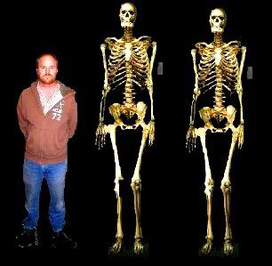 Senzaţional! În Alaska a fost descoperit un vechi cimitir indian în care se aflau nişte schelete gigantice de oameni, cu trăsături neobişnuite