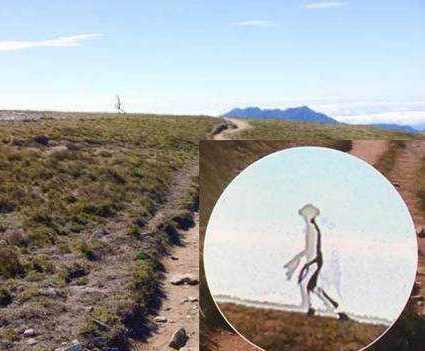 Un poliţist taiwanez a fotografiat cu iPhone 4 un extraterestru transparent care se plimba liniştit lângă un lac montan