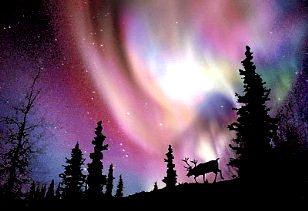 aurora polara 18