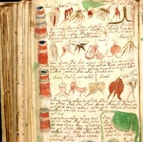 manuscrisul voynich 2