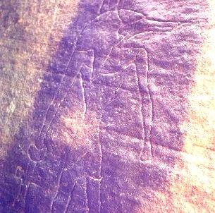petroglif stravechi in Egipt