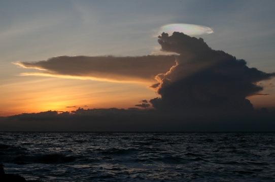 nor curcubeu Costa Rica