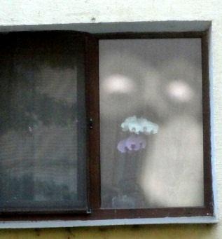 diavol in fereastra 1