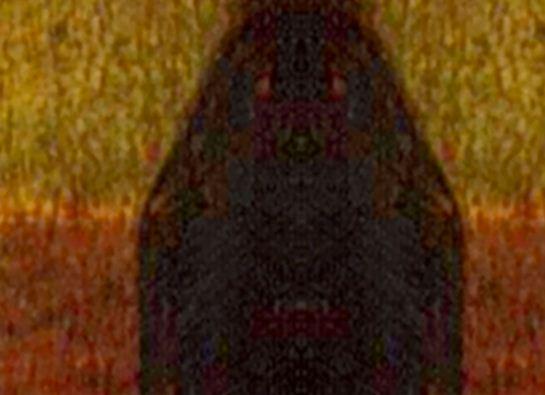 Mona Lisa 4 - caine