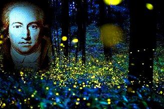 creaturi luminoase Goethe