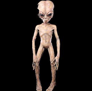 extraterestru 71