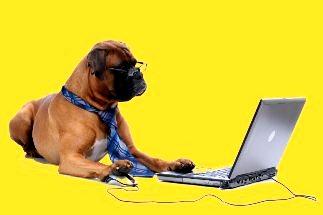 caine laptop