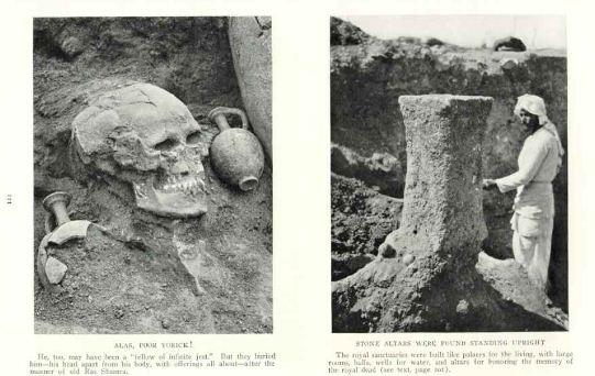 schelet gigant dealuri siriene 1