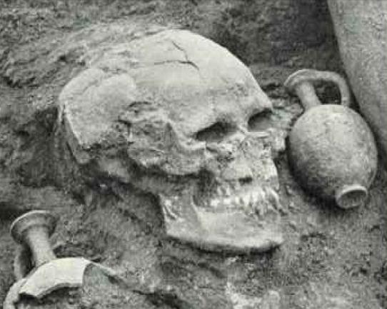 schelet gigant dealuri siriene 2