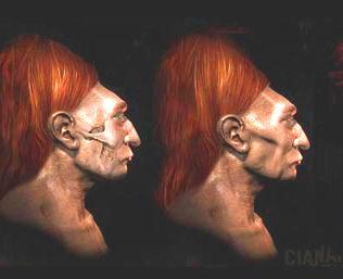 cranii Paracas
