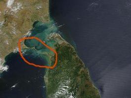 """Între India şi Sri Lanka se află misteriosul """"pod al lui Adam"""", de 30 de kilometri şi cu o vechime de... 1,7 milioane de ani! De cine a fost el construit? De specia primitivă umană """"Homo Habilis""""? Să fim serioşi..."""