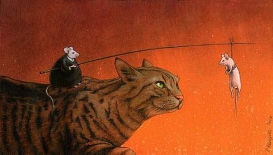 manipulare pisica