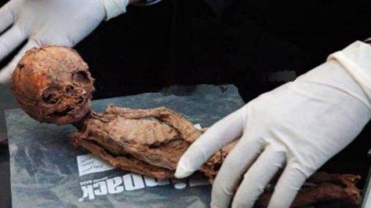 mumia 25 de centimetri