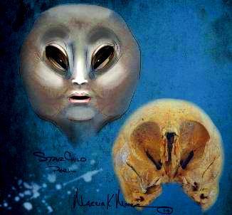 """Craniul ciudat """"Starchild 2"""", descoperit în Peru, a fost refăcut computerizat de o artistă. Rezultatul este uluitor: apare chipul unui extraterestru!"""