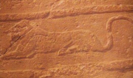 cap Sfinx 2