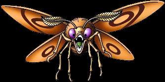 molii gigant