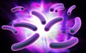 bacterie electrica
