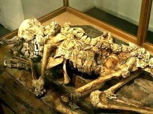 Într-un muzeu japonez se găseşte scheletul real al unui reptilian, adică al unui om-dragon!? Dacă ar fi adevărat, atunci s-ar demonstra existenţa reptilienilor în istoria omenirii!