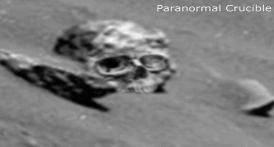 craniu martian 13