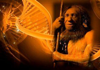 ADN uman