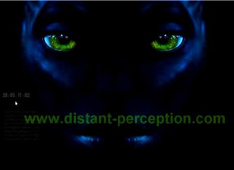 distant perception