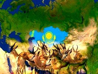 Kazahstan antilope