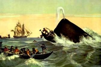 om mancat de balena