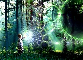 univers holografic