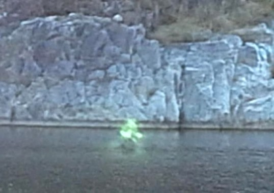 creatura verde 2