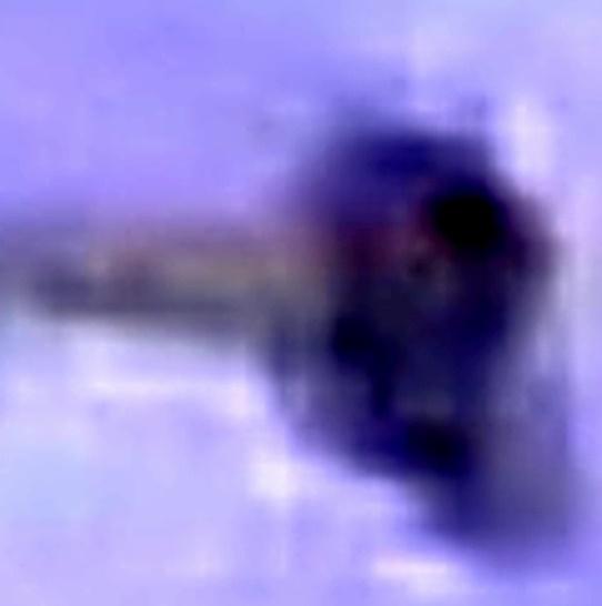 entitati interdimensionale 6