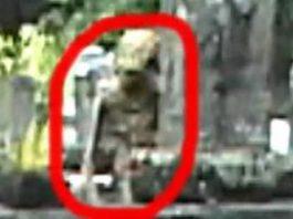 Un internaut susţine că în 2005 a filmat un extraterestru în cimitir, care se ascundea după cruci! Ce căuta acolo, Dumnezeu ştie... Eu zic că totul e o farsă!