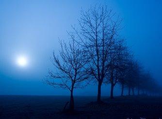 soare albastru pe pamant