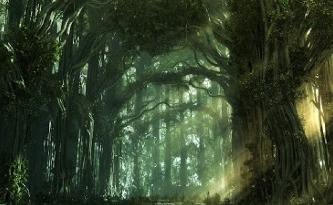 Pădurea Todoruşelor din Buzău, un nou loc misterios din România! Sub ea se află o reţea de 8 km pătraţi de tuneluri, vechi de 6.000 de ani, în care se găsesc secrete nebănuite!
