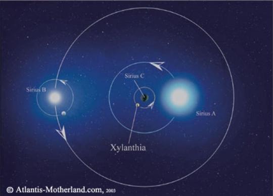 Xylanthia