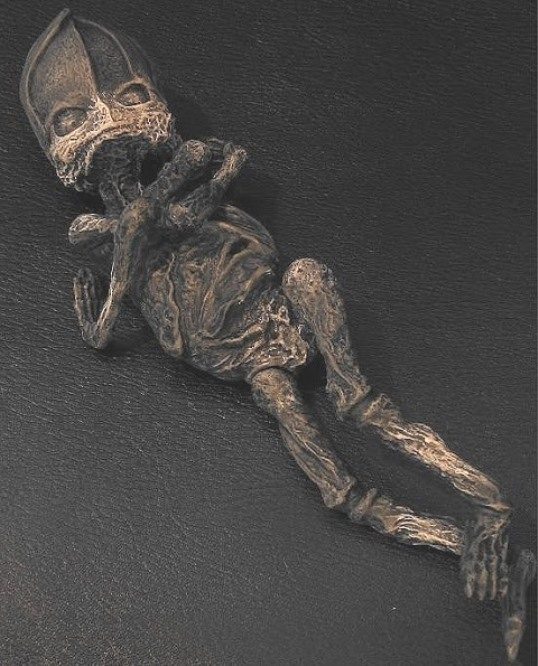 extraterestrul mumificat Rusia 2