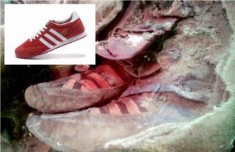 femeie mormant Adidas 2