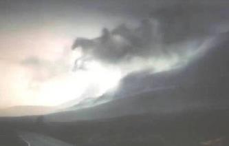 cei 4 cai apocaliptici coperta