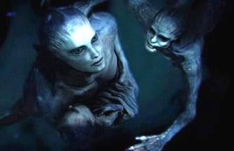 creaturi subacvatice